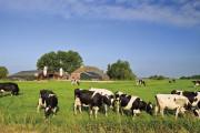 asbest in de agrarische sector